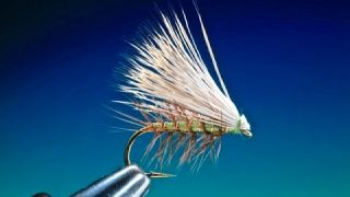 Tying the Elk Hair Caddis with Barry Ord Clarke