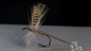 Quill Gordon - Classic Catskill Dry Fly
